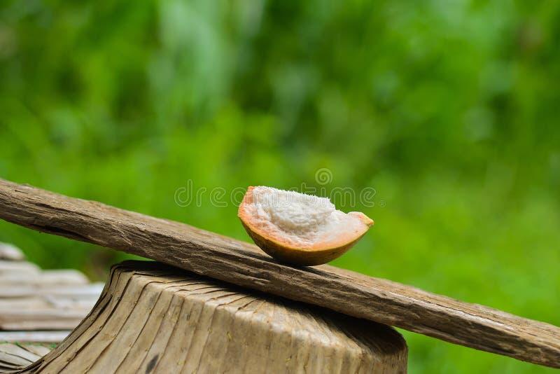 Разделение плодоовощ Santol стоковые фотографии rf