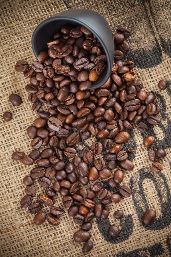 Разлитые кофейные зерна и черная чашка стоковые фотографии rf