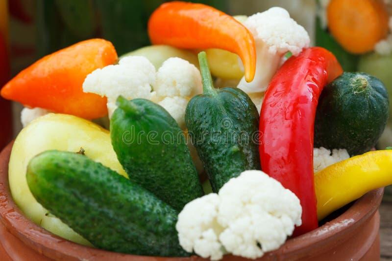 Различные замаринованные marinated овощи стоковые фотографии rf