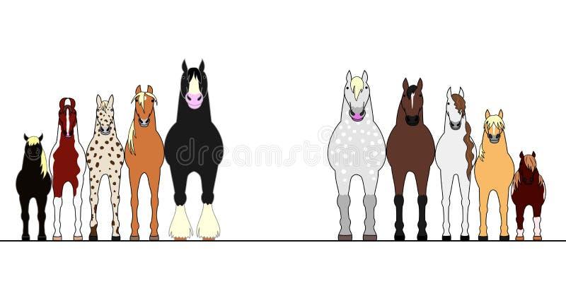 Различные лошади выравниваясь вверх в заказе высоты бесплатная иллюстрация