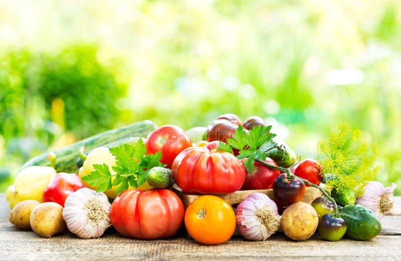 Различные свежие овощи на деревянном столе стоковое фото rf