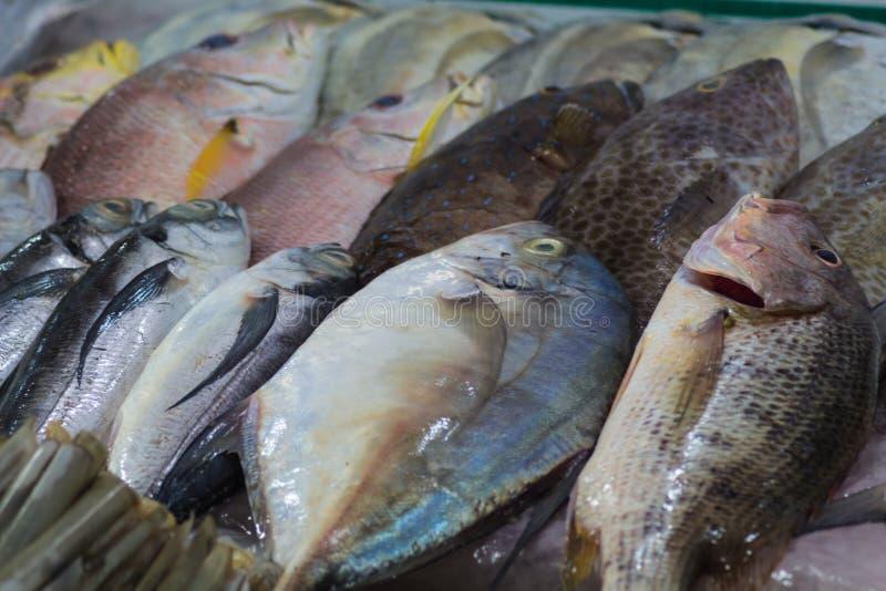 Различные типы рыб моря на рынке, Вьетнама стоковое фото