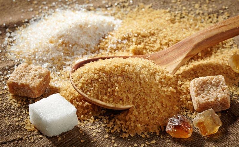 Различные типы сахара стоковое изображение rf