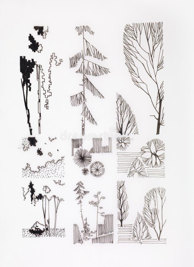 Различные формы деревьев и ветвей иллюстрация вектора