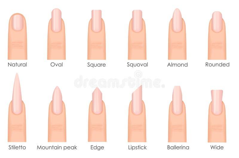 Различные формы ногтя моды Установите виды ногтей Мода пригвождает тип тенденции иллюстрация вектора