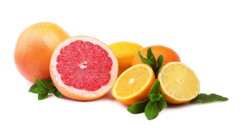 Различные цитрусовые фрукты, изолированные на белой предпосылке Половины цитрусовых фруктов и весь состав с лимоном, грейпфрутом стоковая фотография