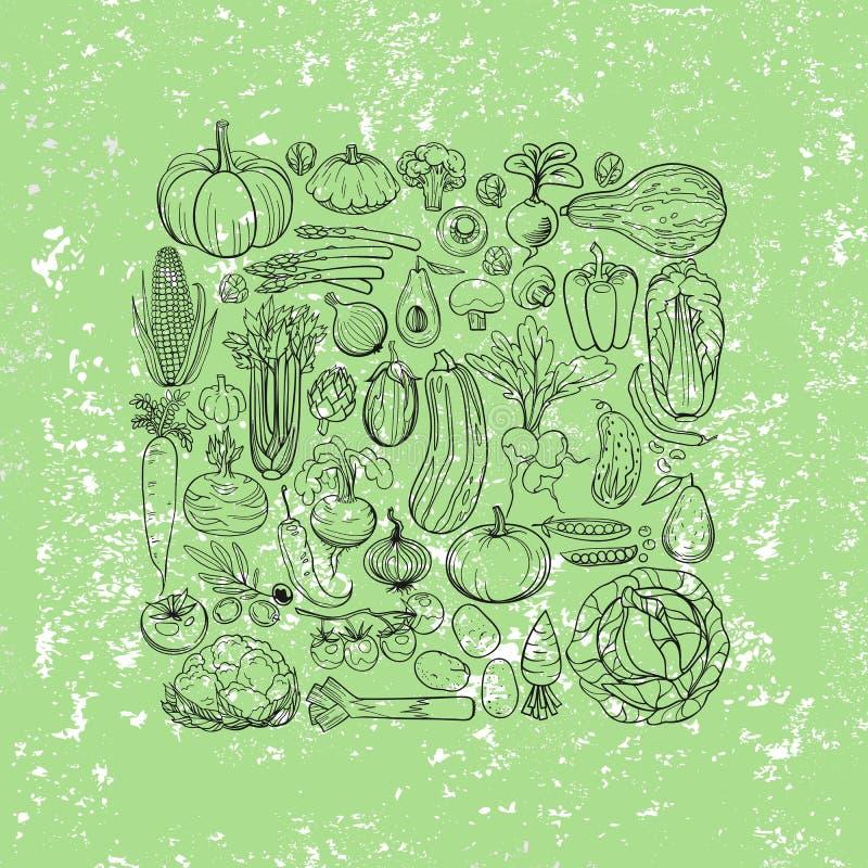Различные чертежи овощей иллюстрация вектора