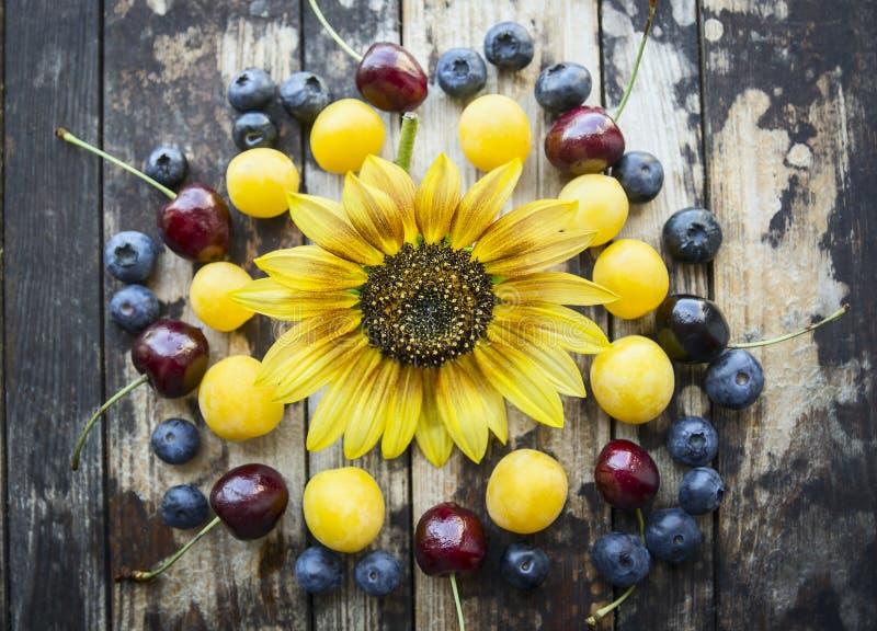 Различные ягоды на деревянной предпосылке с солнцецветом, взгляд сверху стоковые фотографии rf