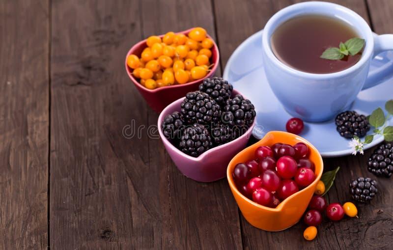 Различные ягоды с чашкой чаю стоковые фотографии rf