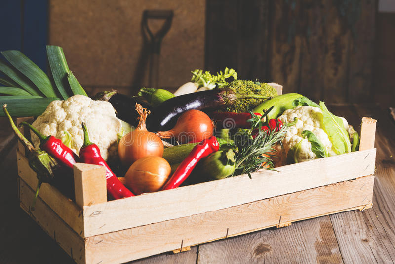 Различный вид местных овощей на деревянной деревенской таблице Коллаж свежих овощей Тонизированное изображение стоковые фотографии rf