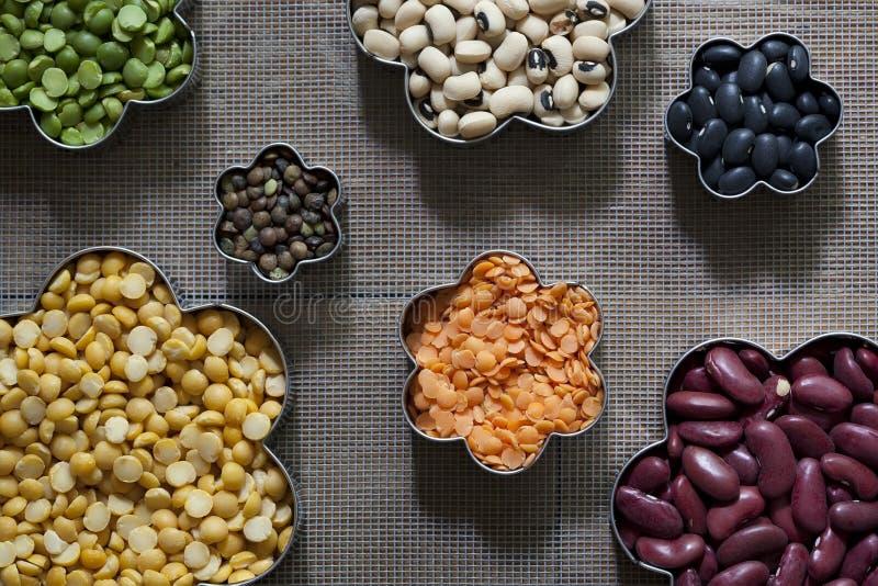 7 различных высушенных бобовыеых стоковое изображение rf