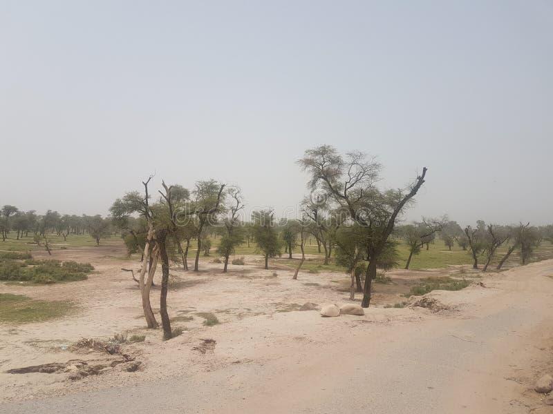 Район неорошаемого земледелия в Пакистане стоковое фото rf