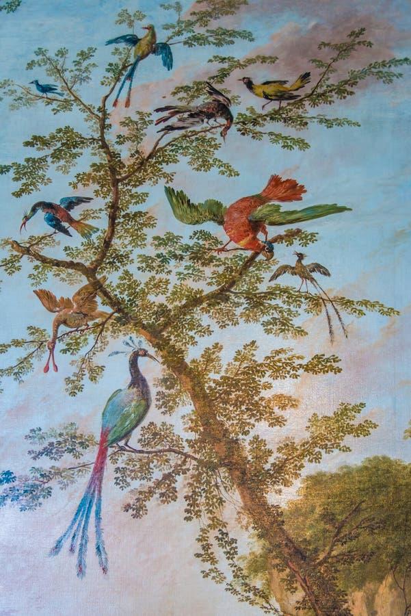 Райские птицы на картине дерева стоковые фотографии rf