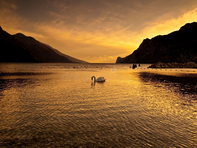 рай земли стоковая фотография