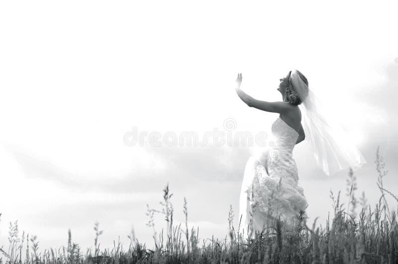 рай невесты ангела стоковая фотография rf