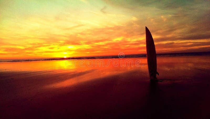 Рай серферов стоковые фотографии rf
