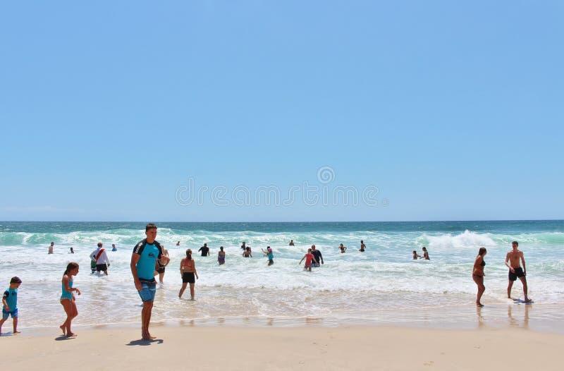 Рай серферов стоковое изображение rf