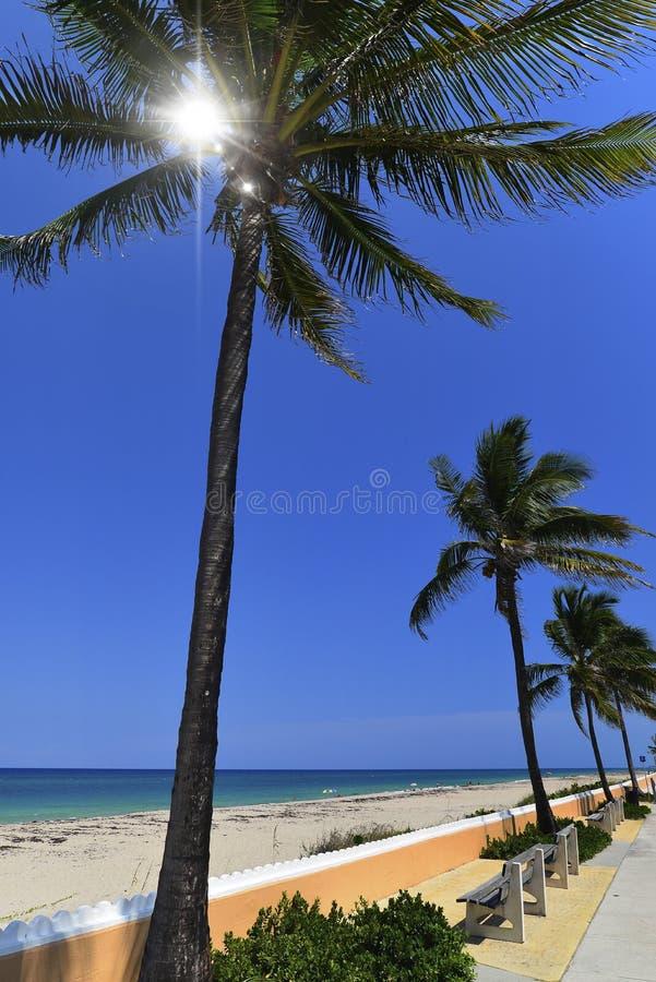 Download рай тропический стоковое изображение. изображение насчитывающей релаксация - 41655543