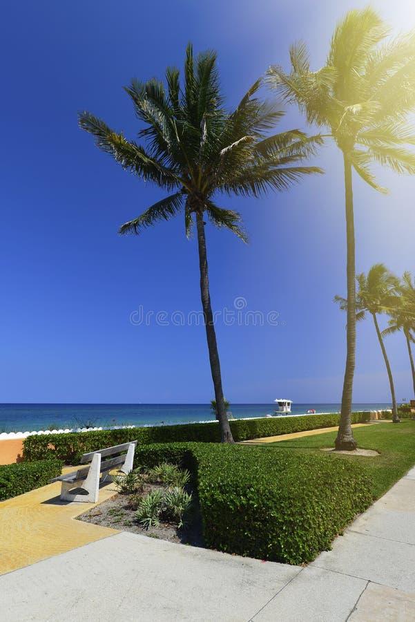 Download рай тропический стоковое фото. изображение насчитывающей цвет - 41655620