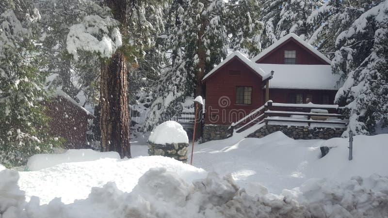 Рай Snowy стоковое фото