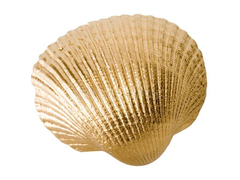 раковина золота стоковые изображения rf