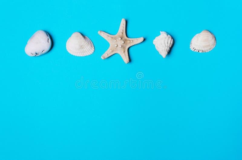 Раковина, камешек, морская звёзда на голубой предпосылке стоковое изображение