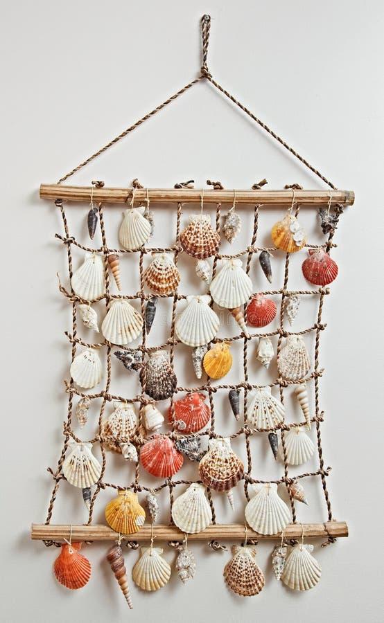 раковина моря декора стоковые фотографии rf