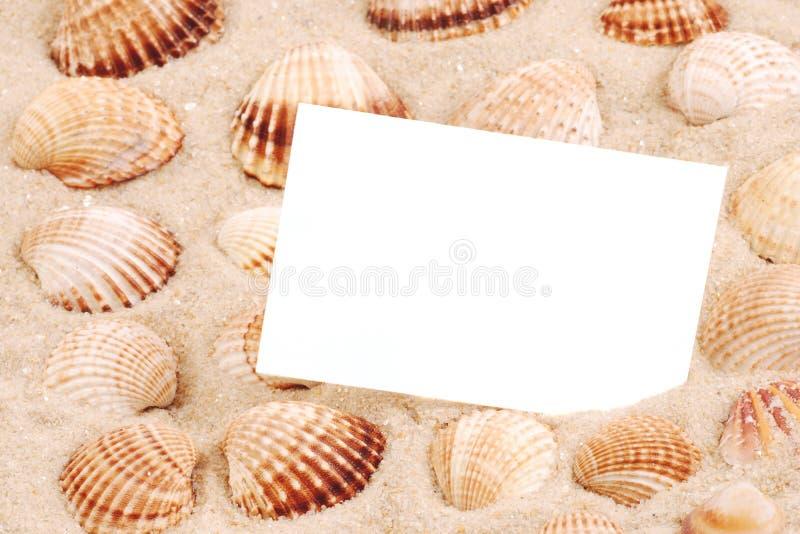 раковина моря песка карточки стоковое изображение rf