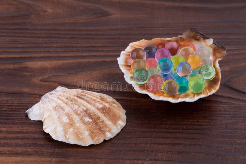 Раковина моря с пестротканым макросом шариков гидрогеля стоковые изображения