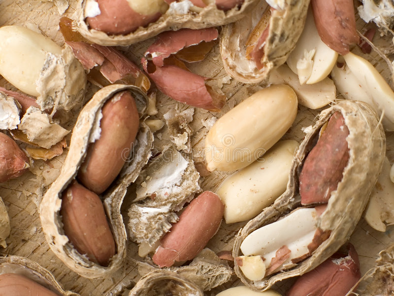 раковины арахисов Стоковая Фотография RF