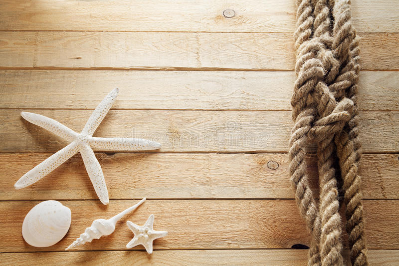 Раковины на корабле стоковое изображение
