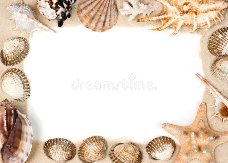 раковины песка рамки стоковое изображение rf