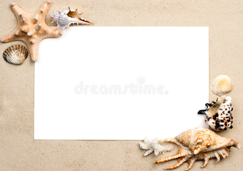 раковины песка рамки стоковые фото