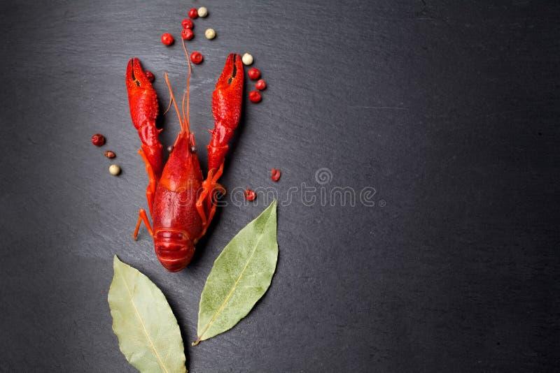Ракы красные, омар младенца с травой для шевелят картофель фри на черной плите шифера стоковое фото rf