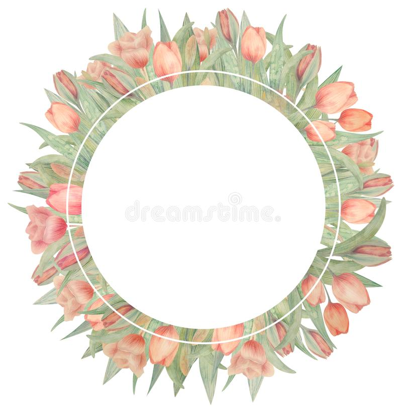 Рамка акварели с тюльпанами Нарисовано вручную Идеал для логотипа, приглашений свадьбы, карт, плакатов стоковые фото