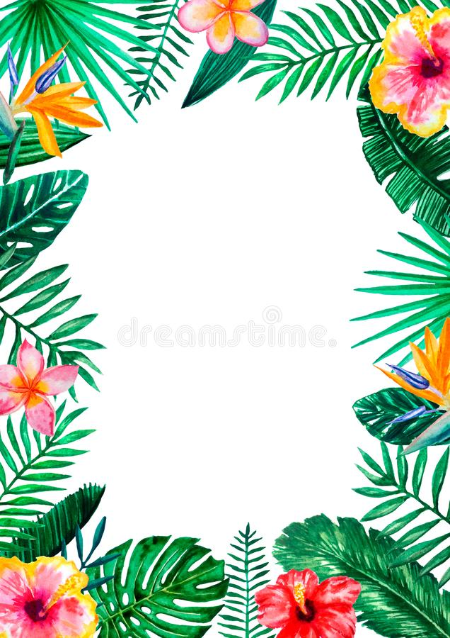 Рамка границы акварели тропическая флористическая для свадьбы, годовщины, дня рождения, приглашений, карт, дат, etc Сохраните дат иллюстрация штока