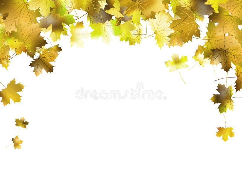 Рамка границы красочных листьев осени. EPS 10 иллюстрация вектора