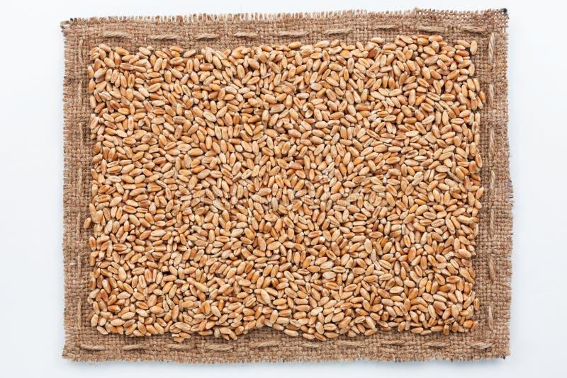 Рамка зерна мешковины и пшеницы стоковые изображения rf