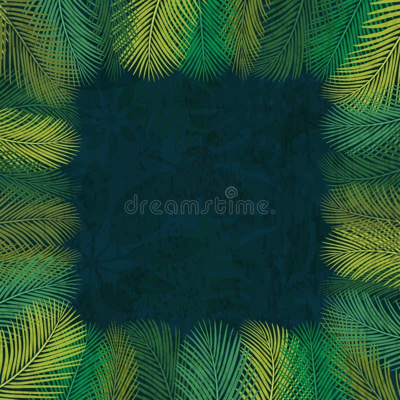 Рамка 1 листьев ладони иллюстрация вектора