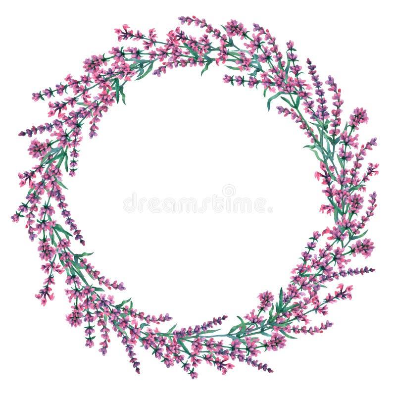 Рамка круга нарисованных рукой цветков лаванды иллюстрация вектора