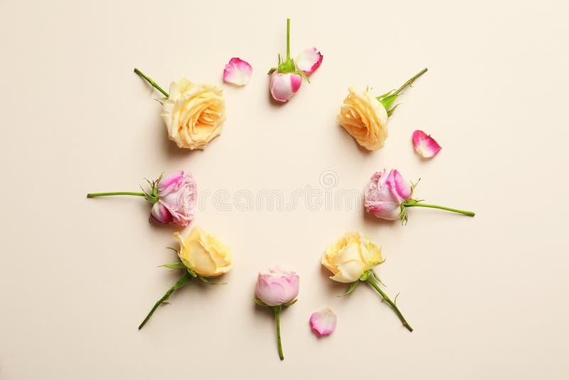 Рамка круга сделанная с розами стоковое изображение
