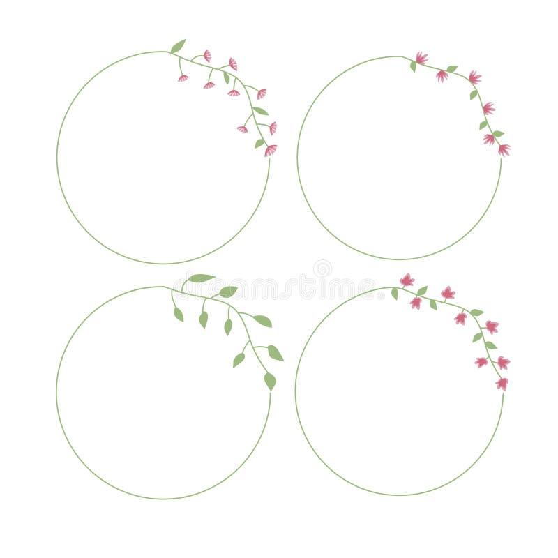 Рамка круглого флористического цветка тонкая с розовыми цветками и листьями зеленого цвета иллюстрация штока