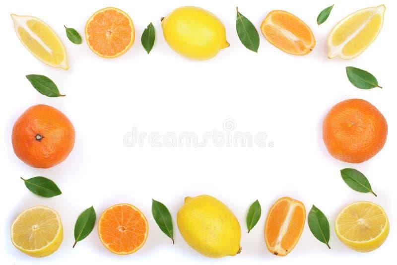 Рамка лимона и tangerine при листья изолированные на белой предпосылке с космосом экземпляра для вашего текста Плоское положение, стоковая фотография