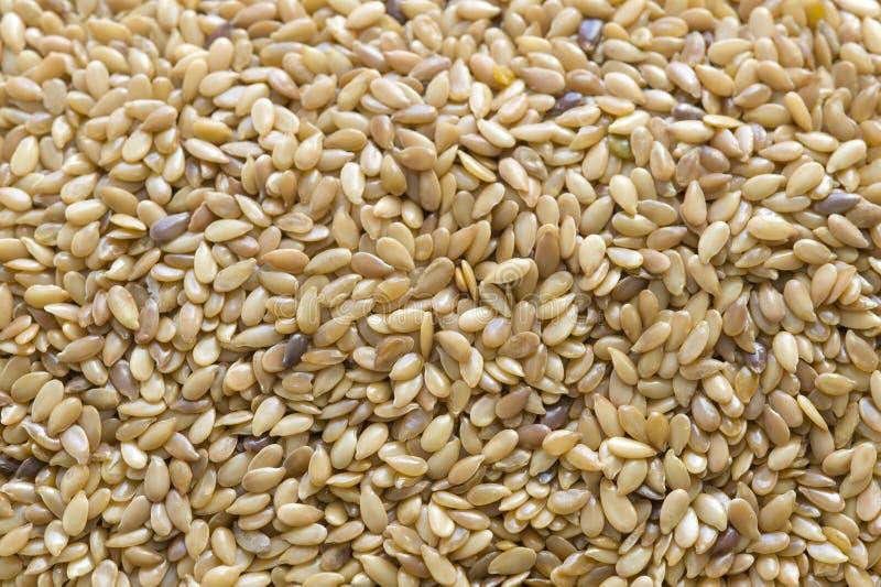 Рамка льняного семени или flaxseed полная стоковая фотография