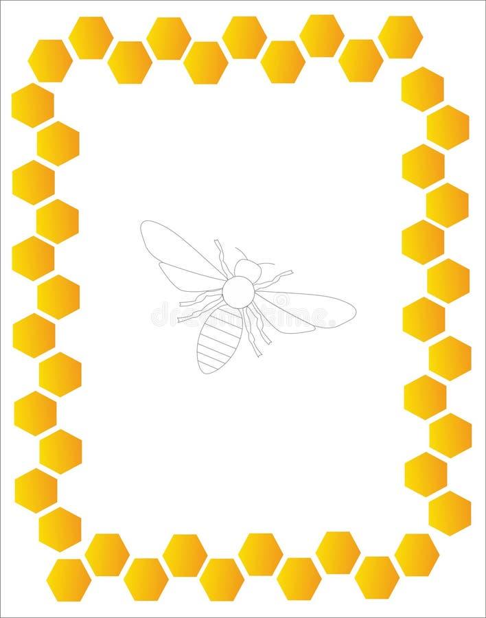 Рамка меда с пчелой стоковое изображение