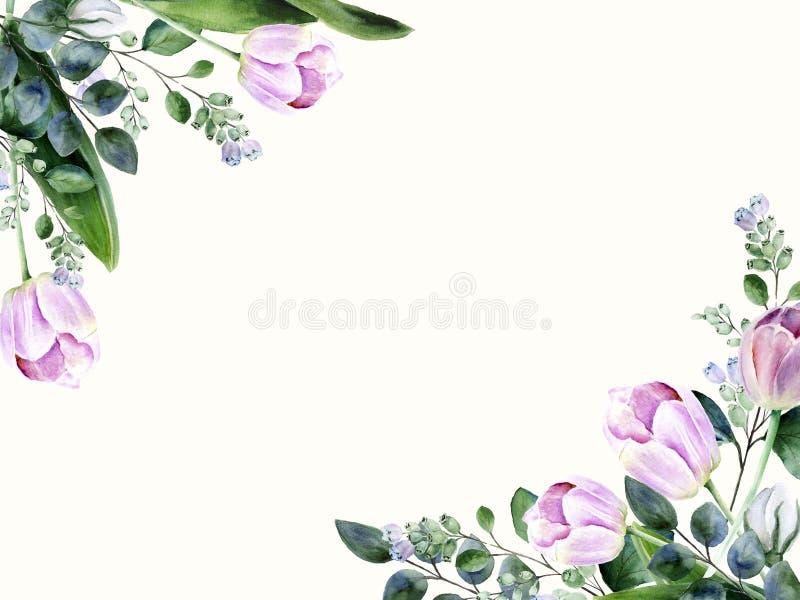 Рамка несимметричной акварели флористическая с розовыми тюльпанами бесплатная иллюстрация