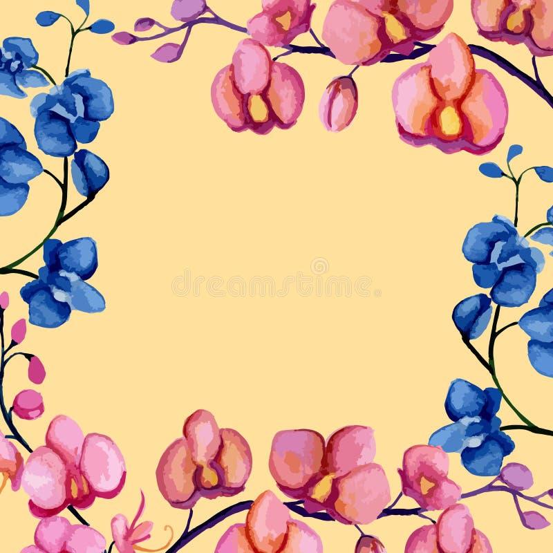 Рамка орхидей иллюстрация штока