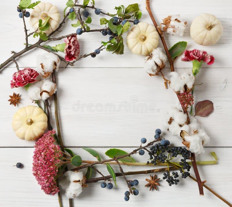 Рамка осени высушенных цветков на белой древесине, предпосылке стоковые фото