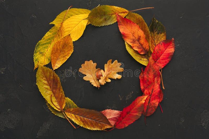 Рамка осени красная и желтая листьев на темной предпосылке стоковые изображения rf