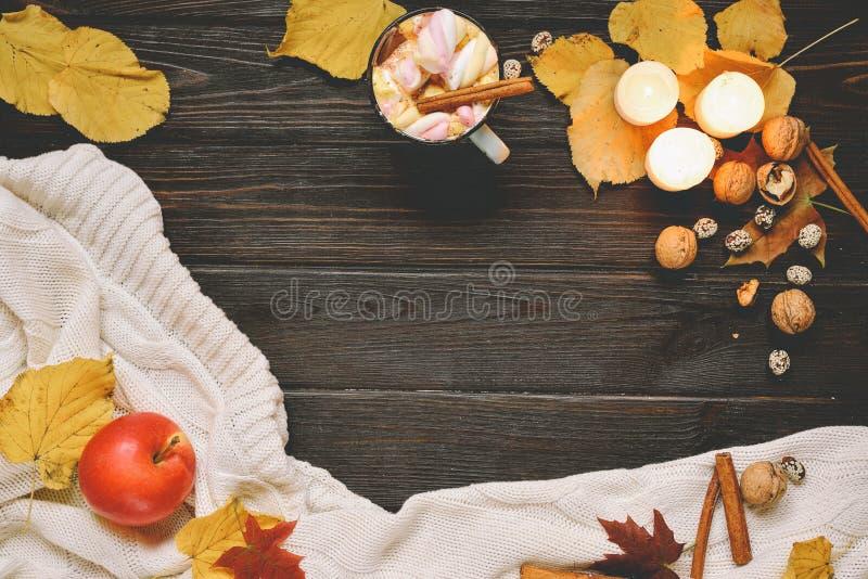 Рамка осени сделанная высушенного падения выходит, кружка какао с marshmellows, гайками, циннамоном, шотландкой, яблоками Взгляд  стоковое фото rf